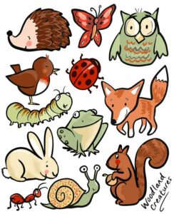 finola-stack-woodland-creatures