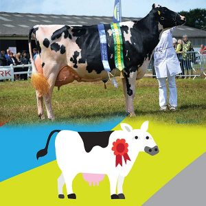 Cornwall-Royal-Cornwall-Show-Comparison-600x600-Opt