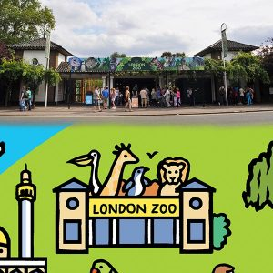 London-Zoo-Comparison-New-600x600-Opt